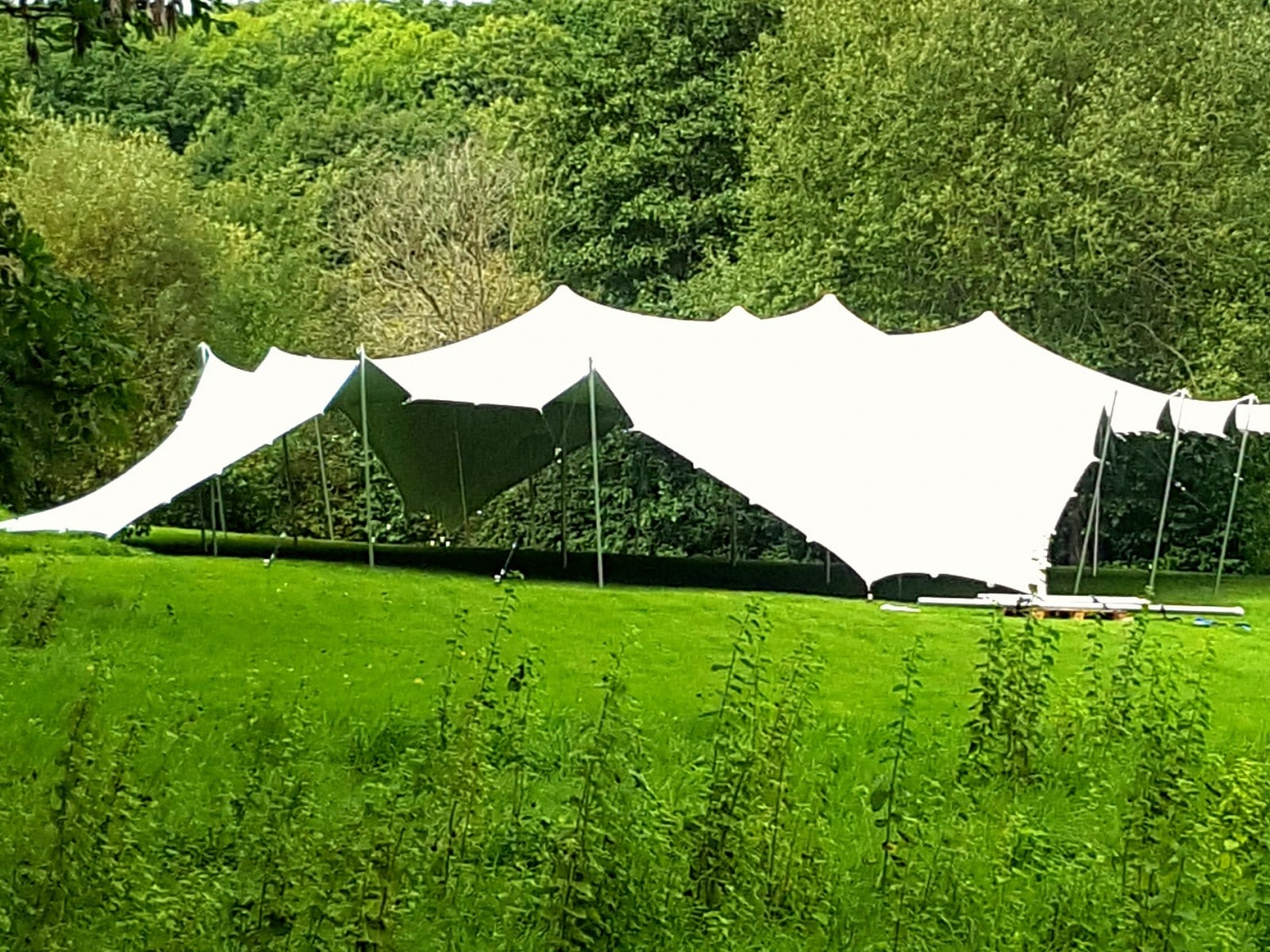 Weeding Stretch tent in Surrey